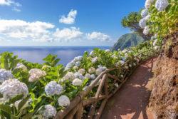YREN' et les Açores