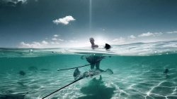 YREN'-yren-courtier-voyages-Polynésie