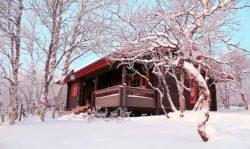 YREN'-yren-Laponie