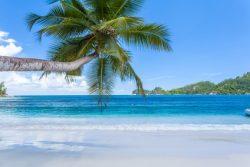 YREN'-yren-courtier-voyages-sur-mesure-seychelles