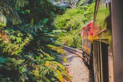 YREN'-yrene-courtier-voyages-sur-mesure-train-panama